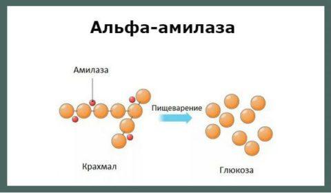 Повышена амилаза и билирубин