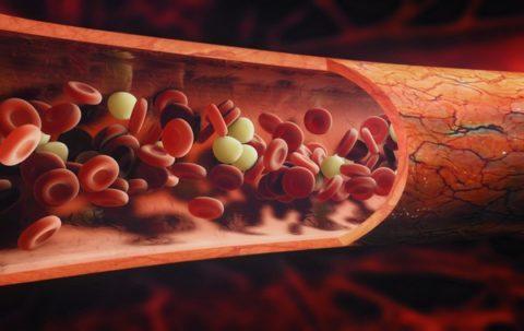 Эритроцитов в крови у новорожденного в норме составляет