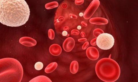 Эритроциты повышены общий анализ крови