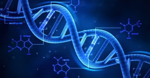 Дизэритропоэтические анемии этиология патогенез проявления