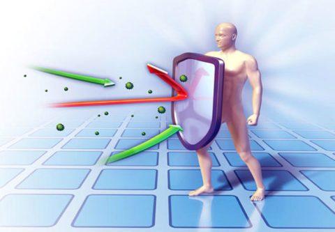 Как повысить белок в анализе крови