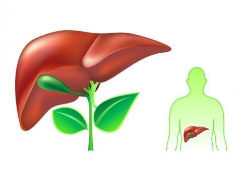 Анализ крови общий при гепатите