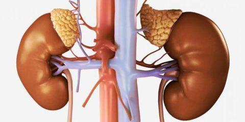 Проверить анализы крови калий