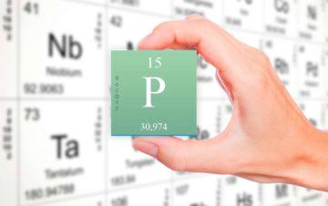 Биохимический анализ крови фосфор расшифровка у взрослых норма в таблице